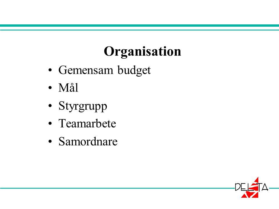 Organisation Gemensam budget Mål Styrgrupp Teamarbete Samordnare
