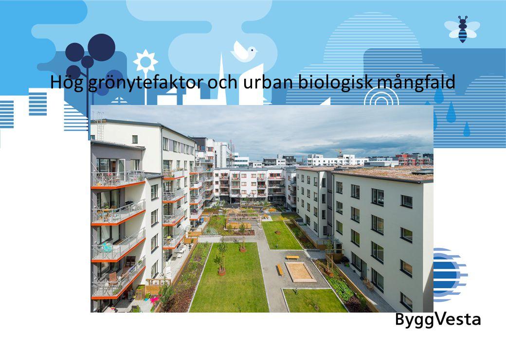 Hög grönytefaktor och urban biologisk mångfald