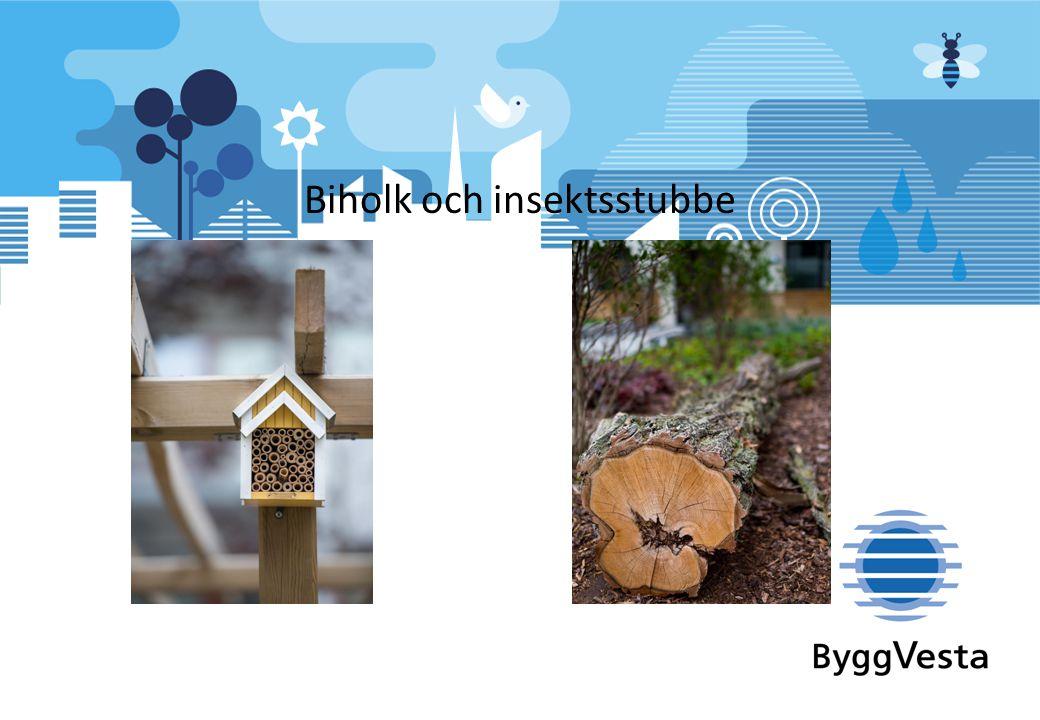 Biholk och insektsstubbe