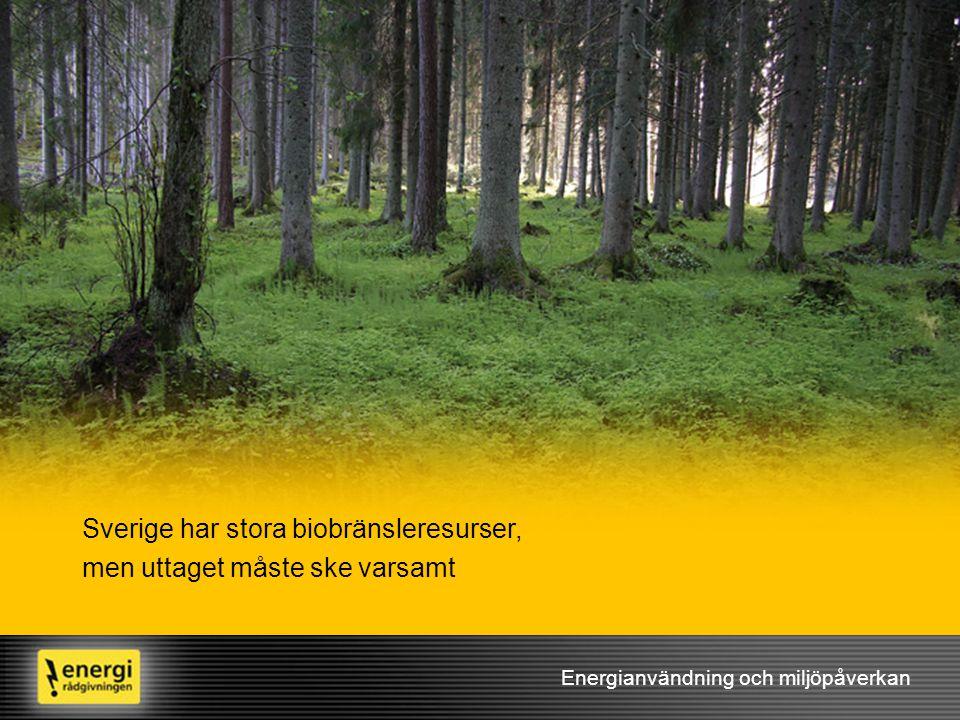 Sverige har stora biobränsleresurser, men uttaget måste ske varsamt