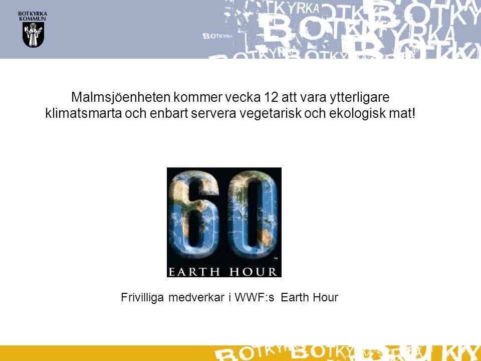 Frivilliga medverkar i WWF:s Earth Hour