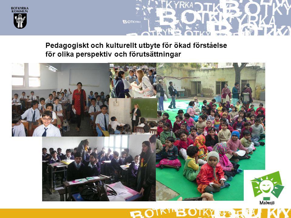 Pedagogiskt och kulturellt utbyte för ökad förståelse