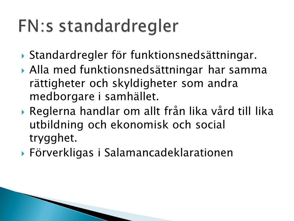 FN:s standardregler Standardregler för funktionsnedsättningar.