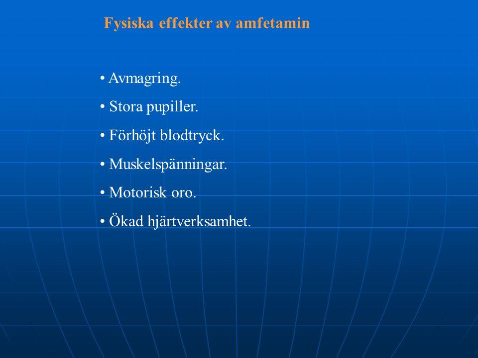 Fysiska effekter av amfetamin