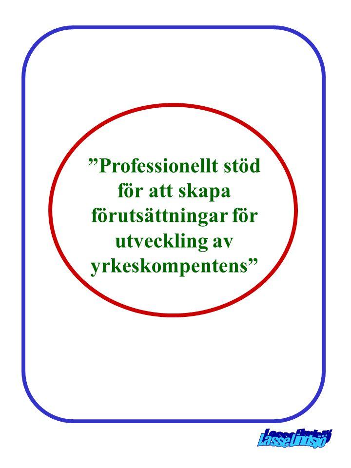 Professionellt stöd för att skapa förutsättningar för utveckling av yrkeskompentens