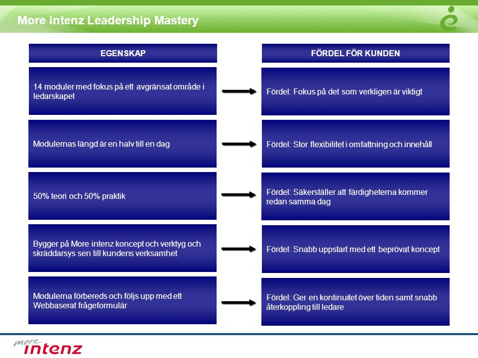 More intenz Leadership Mastery