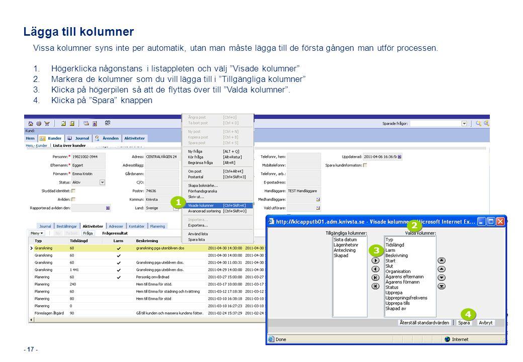Lägga till kolumner Vissa kolumner syns inte per automatik, utan man måste lägga till de första gången man utför processen.