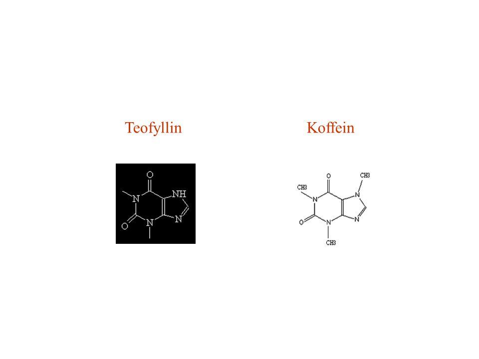 Teofyllin Koffein