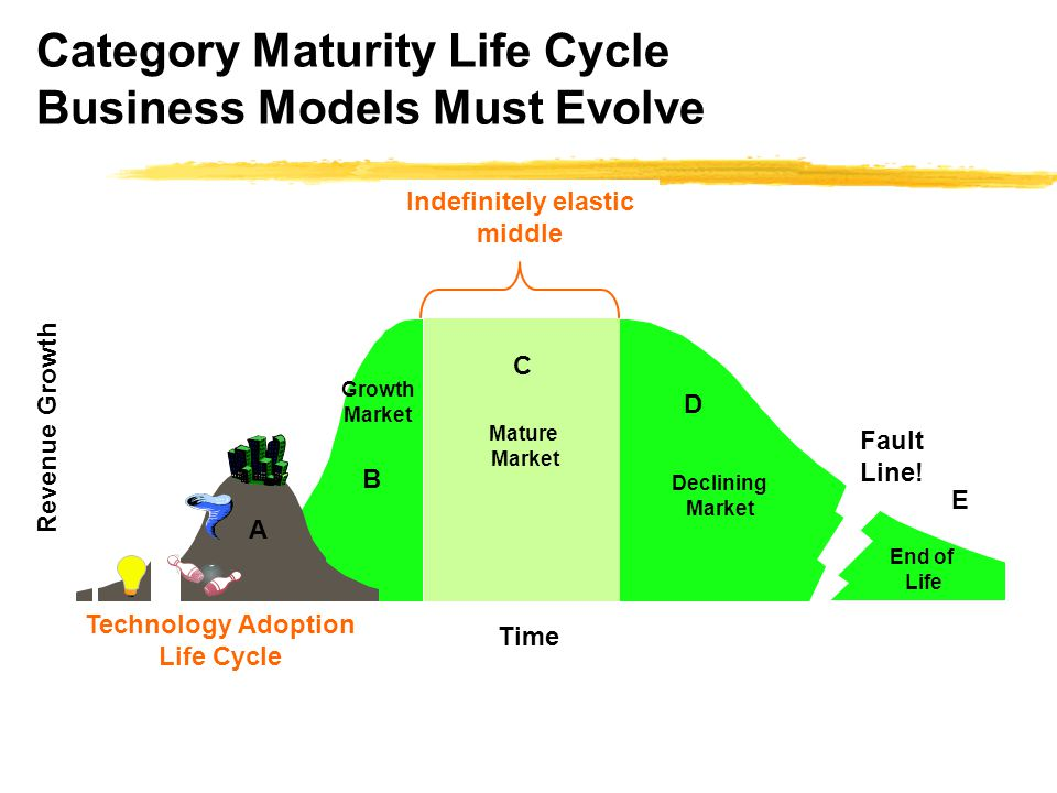 Category Maturity Life Cycle Business Models Must Evolve