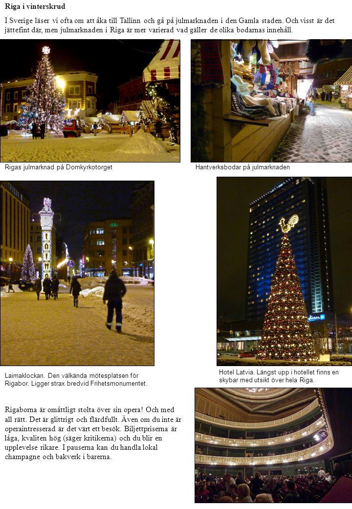 Riga i vinterskrud