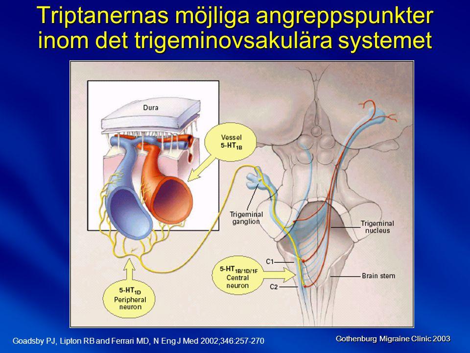 Triptanernas möjliga angreppspunkter inom det trigeminovsakulära systemet