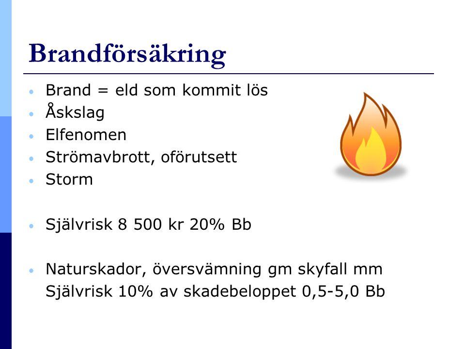 Brandförsäkring Brand = eld som kommit lös Åskslag Elfenomen