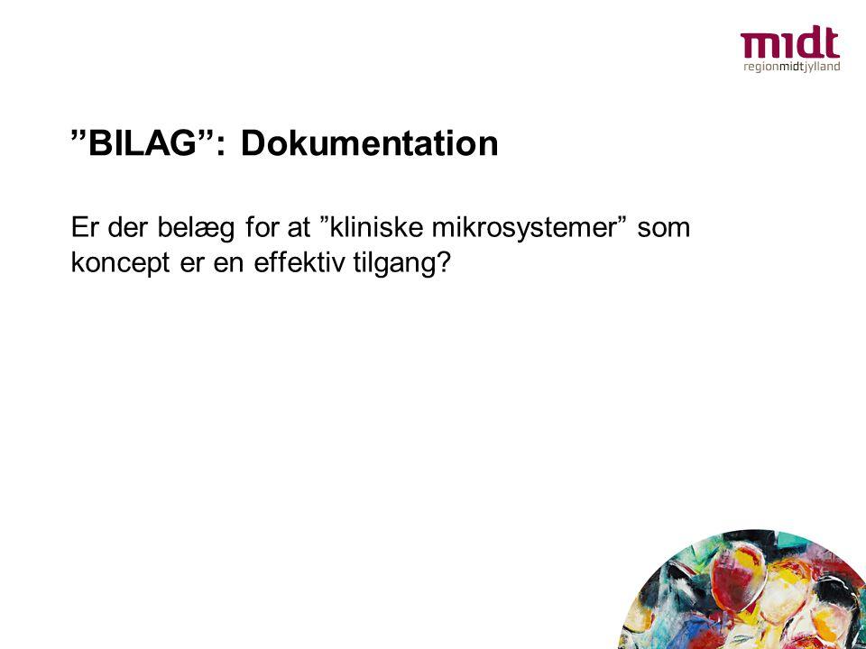 BILAG : Dokumentation