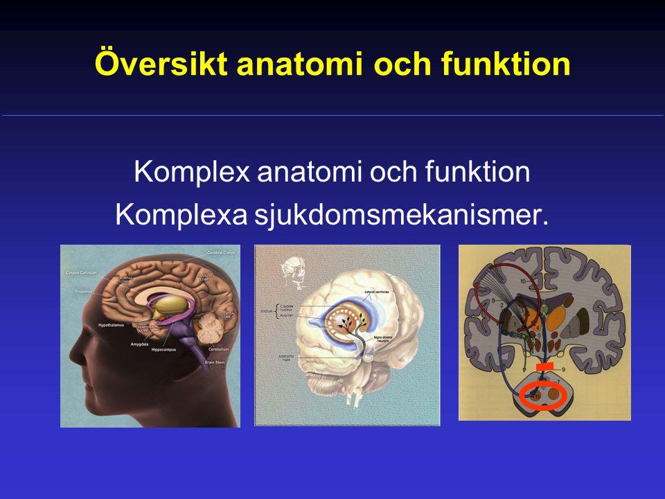 Översikt anatomi och funktion