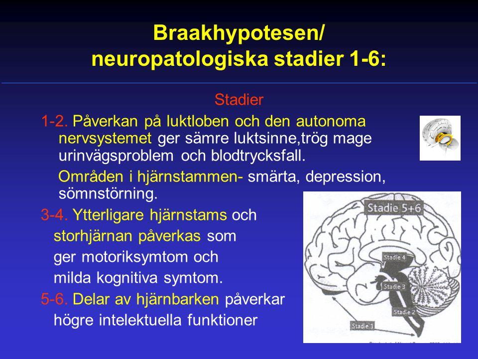 Braakhypotesen/ neuropatologiska stadier 1-6: