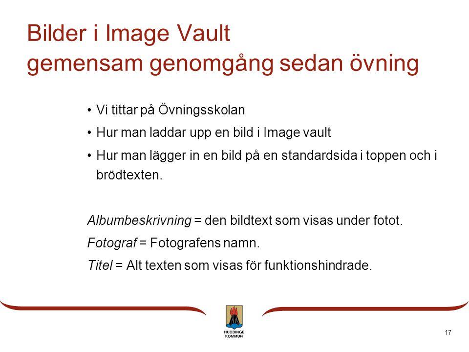 Bilder i Image Vault gemensam genomgång sedan övning