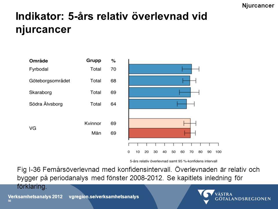 Indikator: 5-års relativ överlevnad vid njurcancer