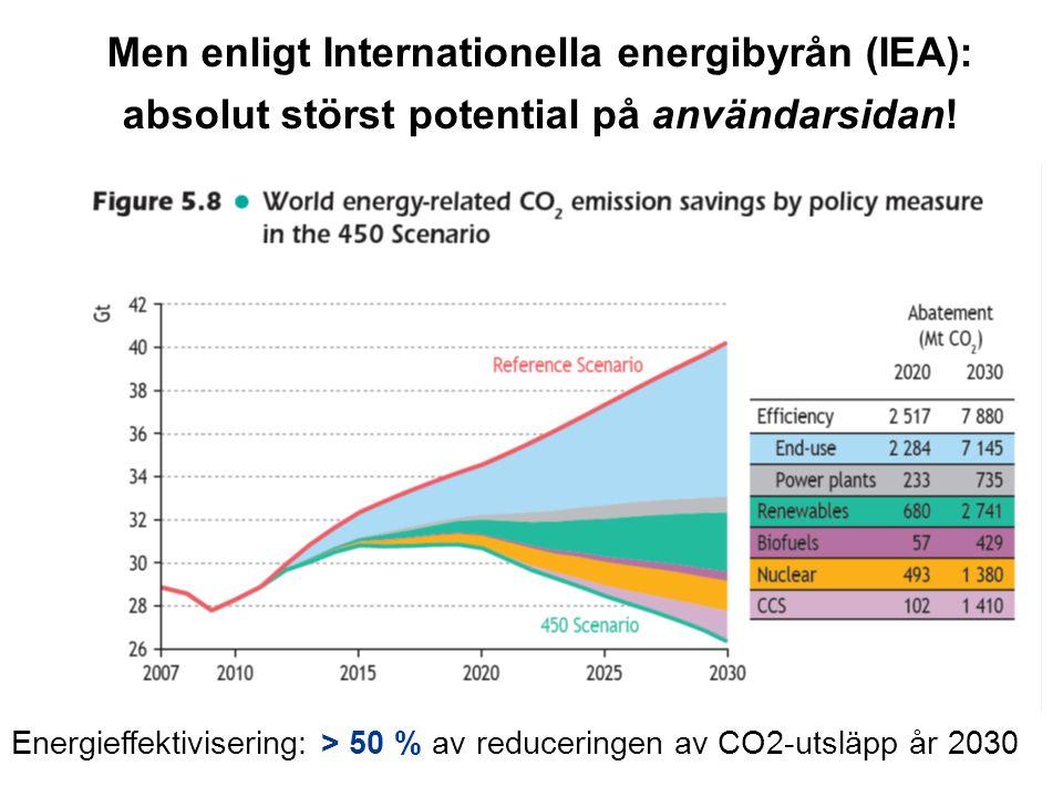 Men enligt Internationella energibyrån (IEA): absolut störst potential på användarsidan!