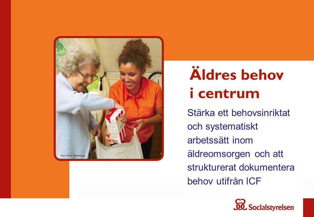 Stärka ett behovsinriktat och systematiskt arbetssätt inom äldreomsorgen och att strukturerat dokumentera behov utifrån ICF