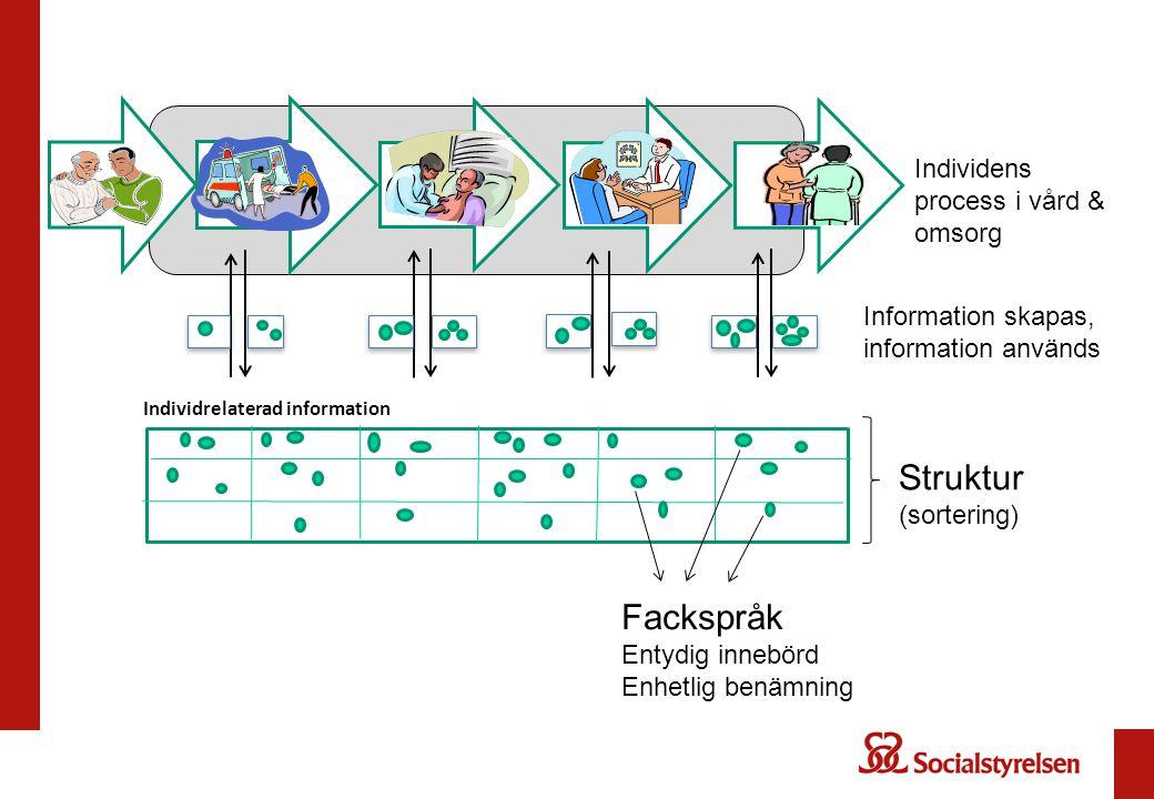 Struktur (sortering) Fackspråk Individens process i vård & omsorg
