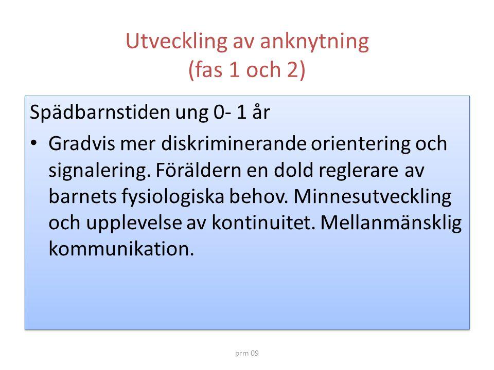 Utveckling av anknytning (fas 1 och 2)