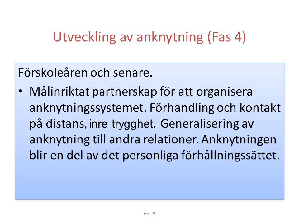 Utveckling av anknytning (Fas 4)