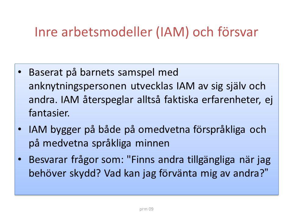 Inre arbetsmodeller (IAM) och försvar