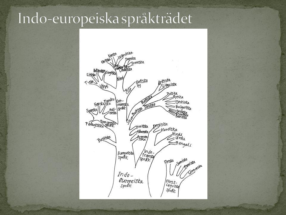 Indo-europeiska språkträdet