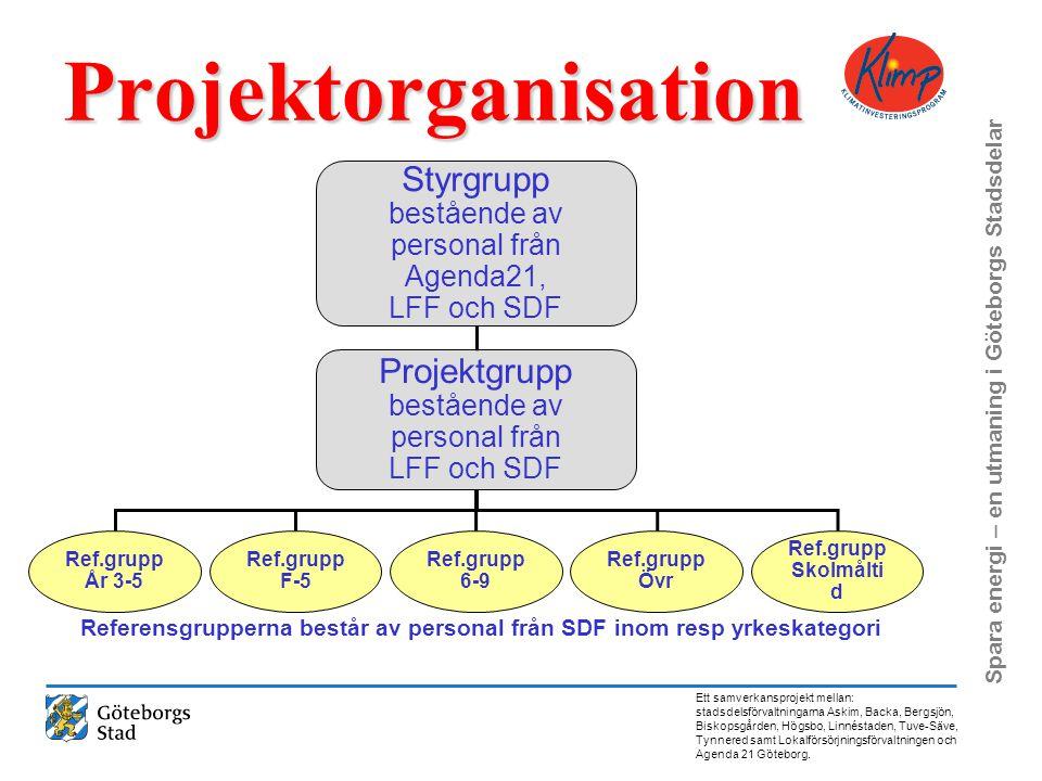 Projektorganisation Styrgrupp Projektgrupp bestående av personal från