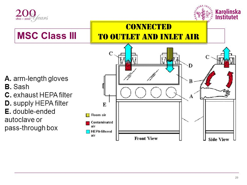 MSC Class III Connected To outlet and inlet air A. arm-length gloves