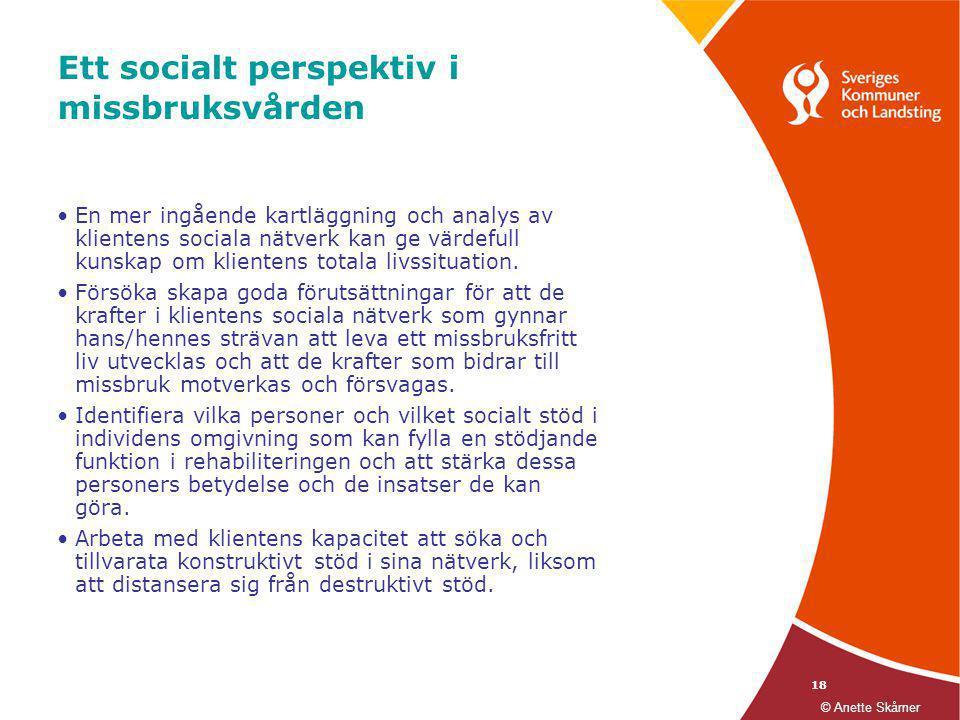 Ett socialt perspektiv i missbruksvården
