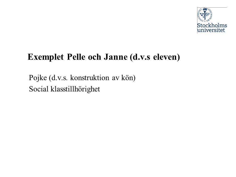 Exemplet Pelle och Janne (d.v.s eleven)