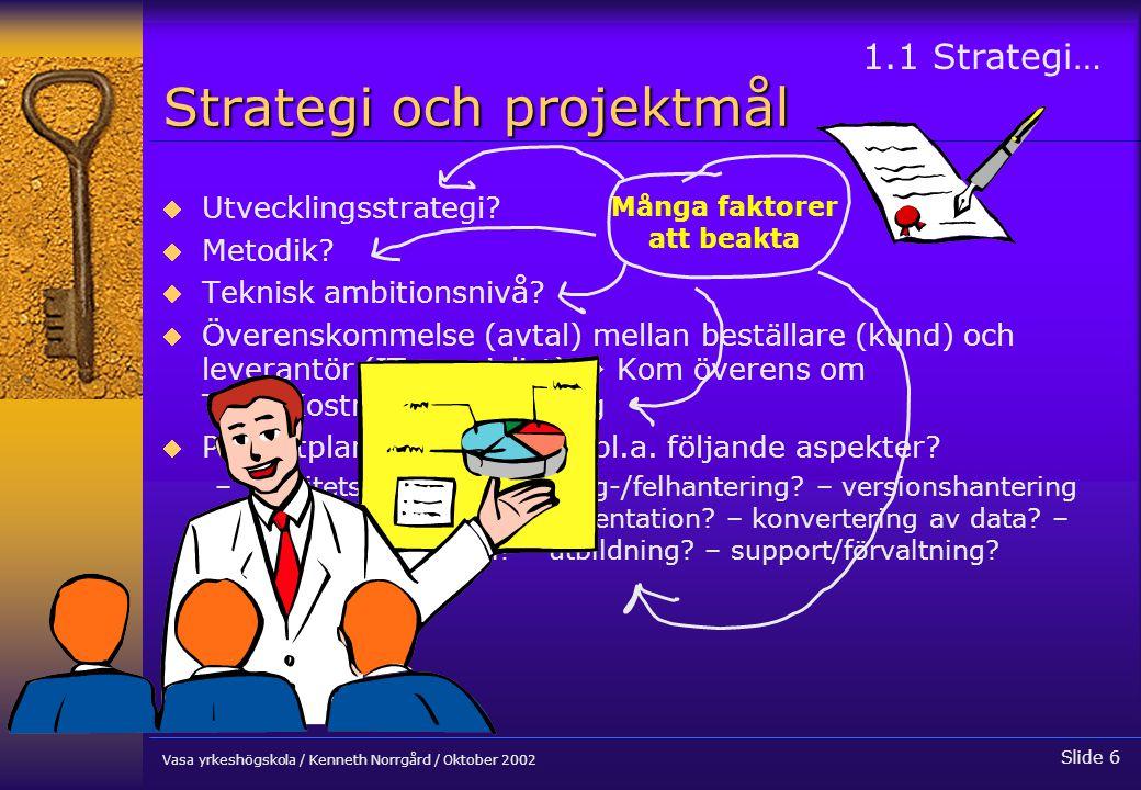 Strategi och projektmål