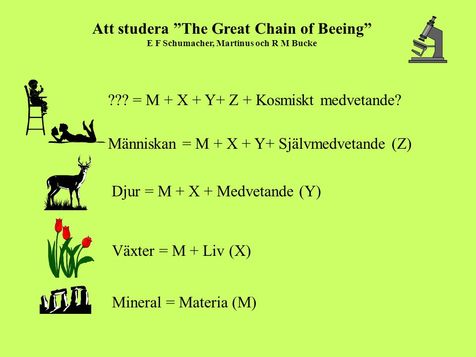 Att studera The Great Chain of Beeing