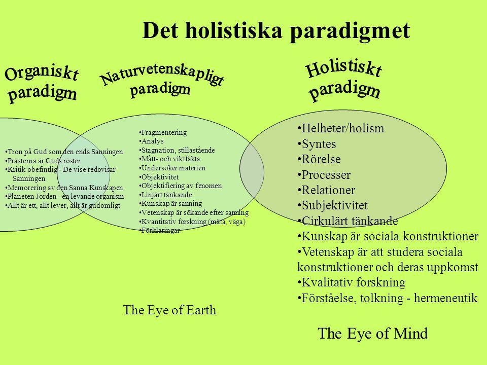 Det holistiska paradigmet
