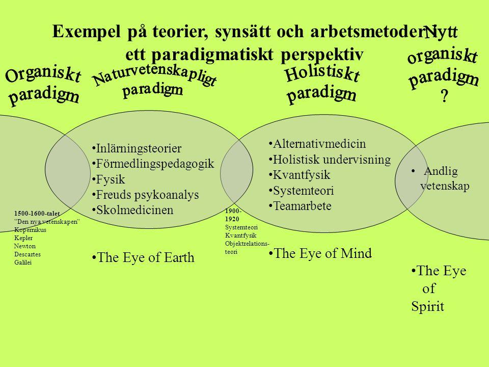 Exempel på teorier, synsätt och arbetsmetoder i ett paradigmatiskt perspektiv