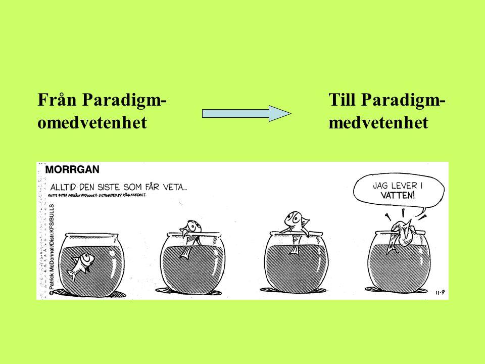 Från Paradigm- Till Paradigm-omedvetenhet medvetenhet