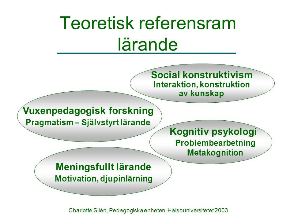 Teoretisk referensram lärande