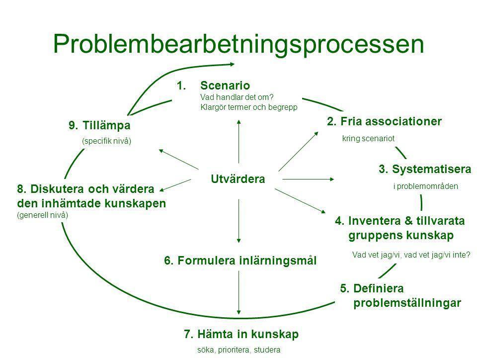 Problembearbetningsprocessen