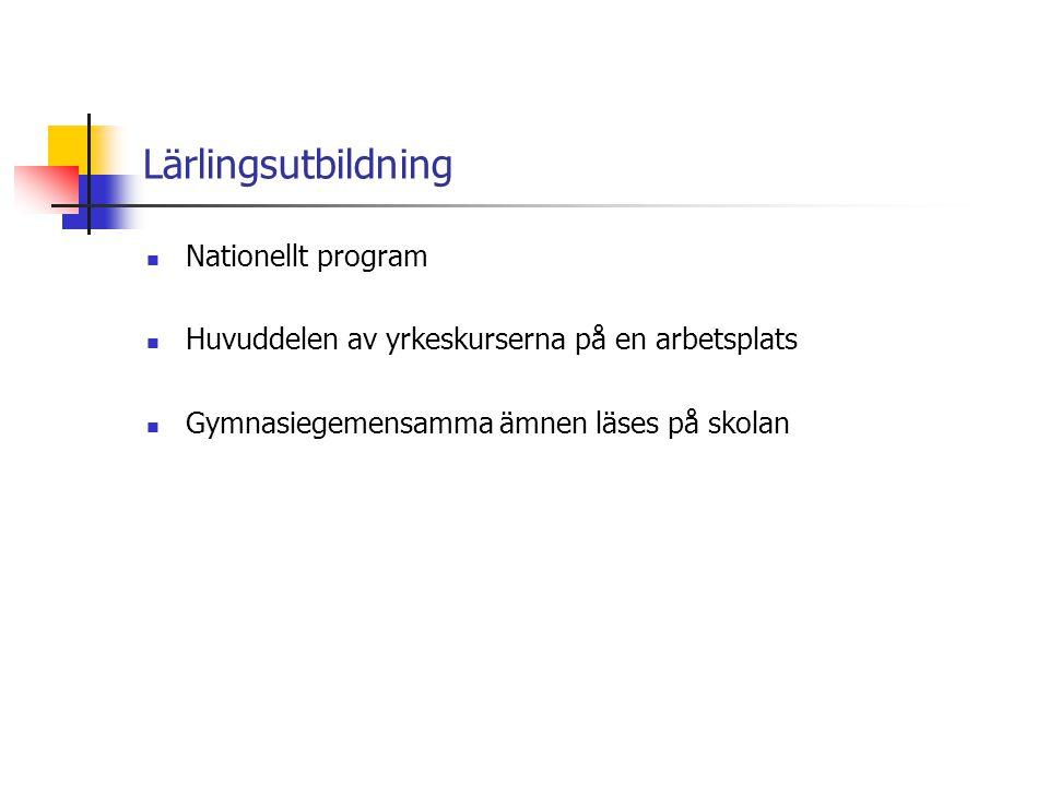 Lärlingsutbildning Nationellt program
