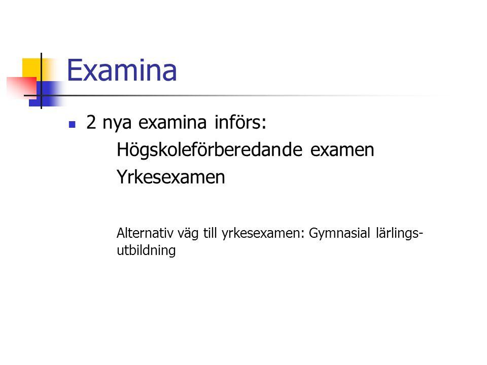 Examina 2 nya examina införs: Högskoleförberedande examen Yrkesexamen