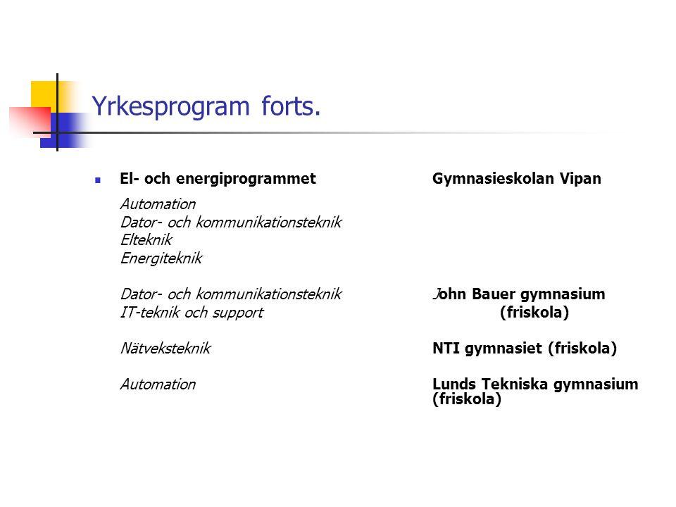 Yrkesprogram forts. El- och energiprogrammet Gymnasieskolan Vipan