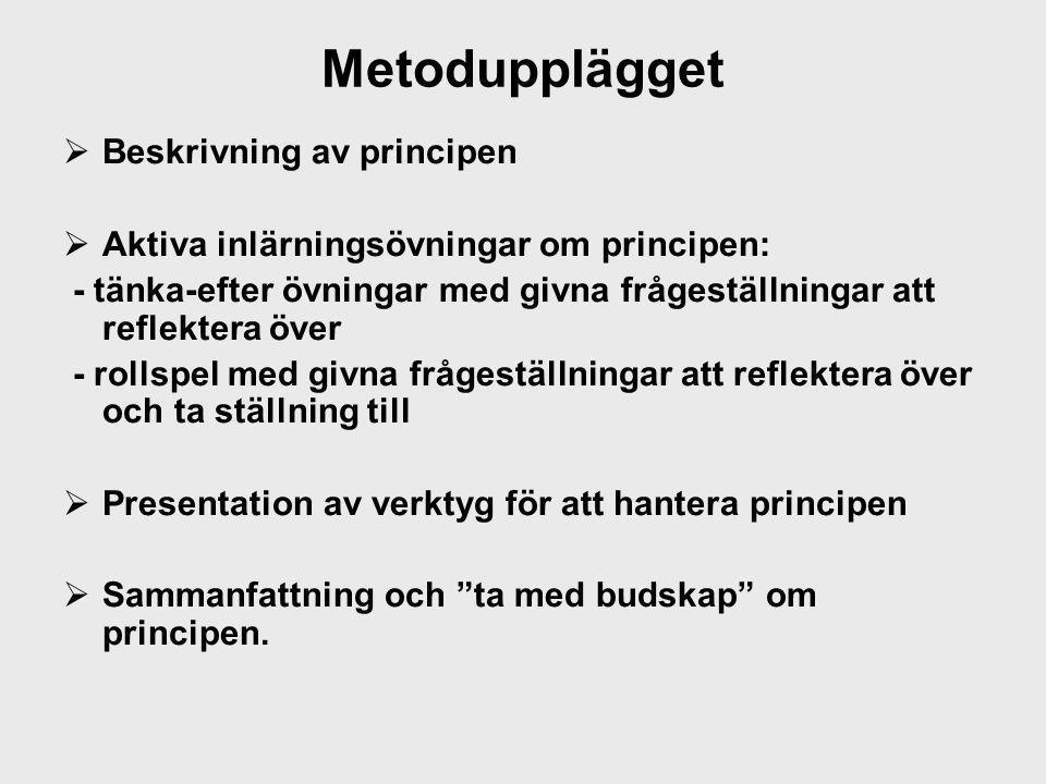 Metodupplägget Beskrivning av principen