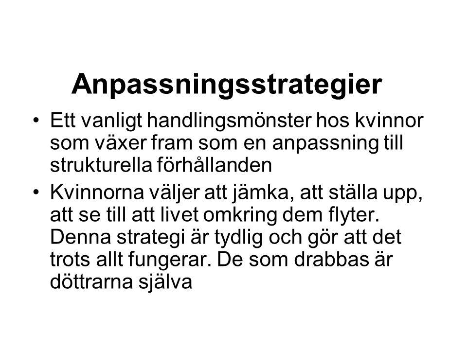 Anpassningsstrategier