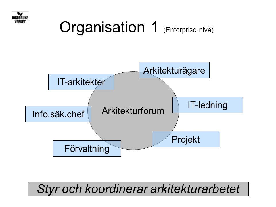 Organisation 1 (Enterprise nivå)