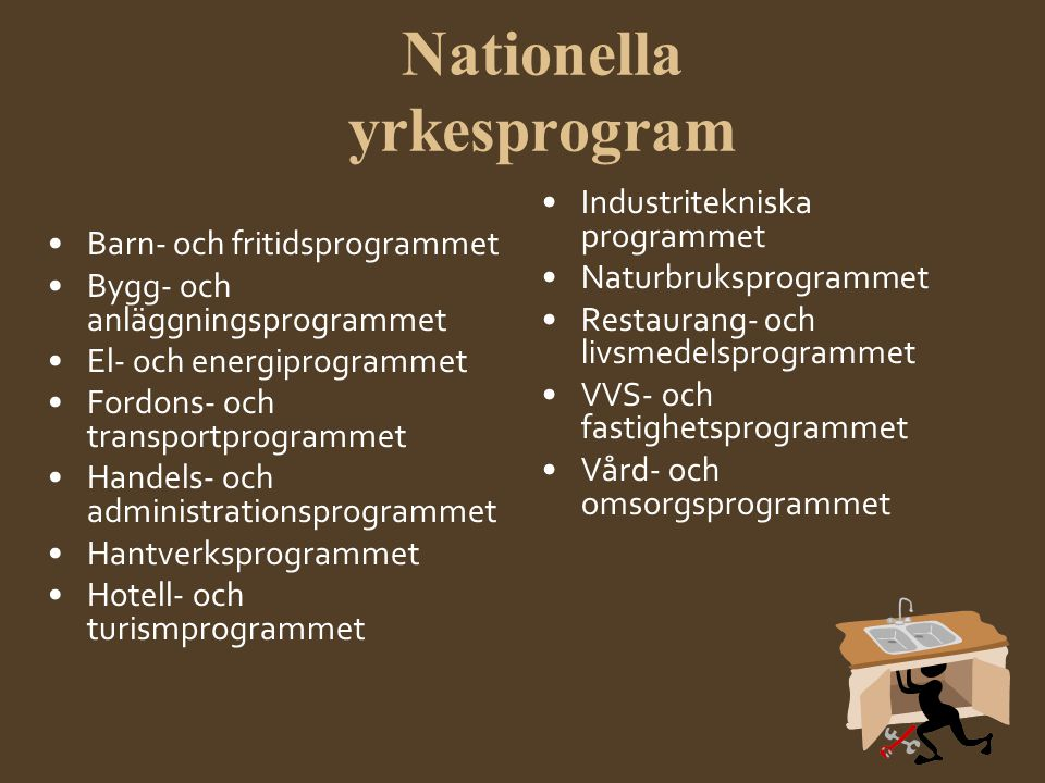 Nationella yrkesprogram