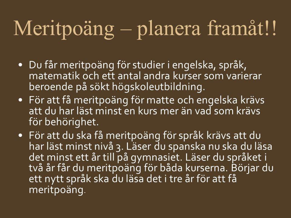 Meritpoäng – planera framåt!!