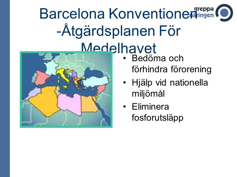Barcelona Konventionen -Åtgärdsplanen För Medelhavet
