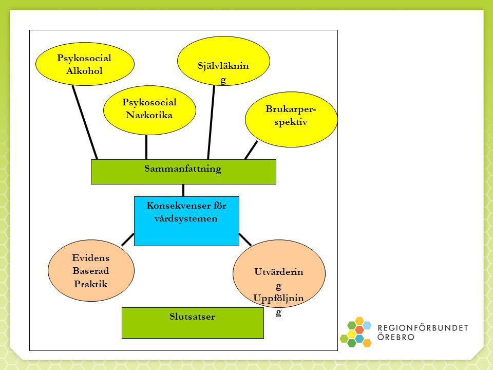 Konsekvenser för vårdsystemen