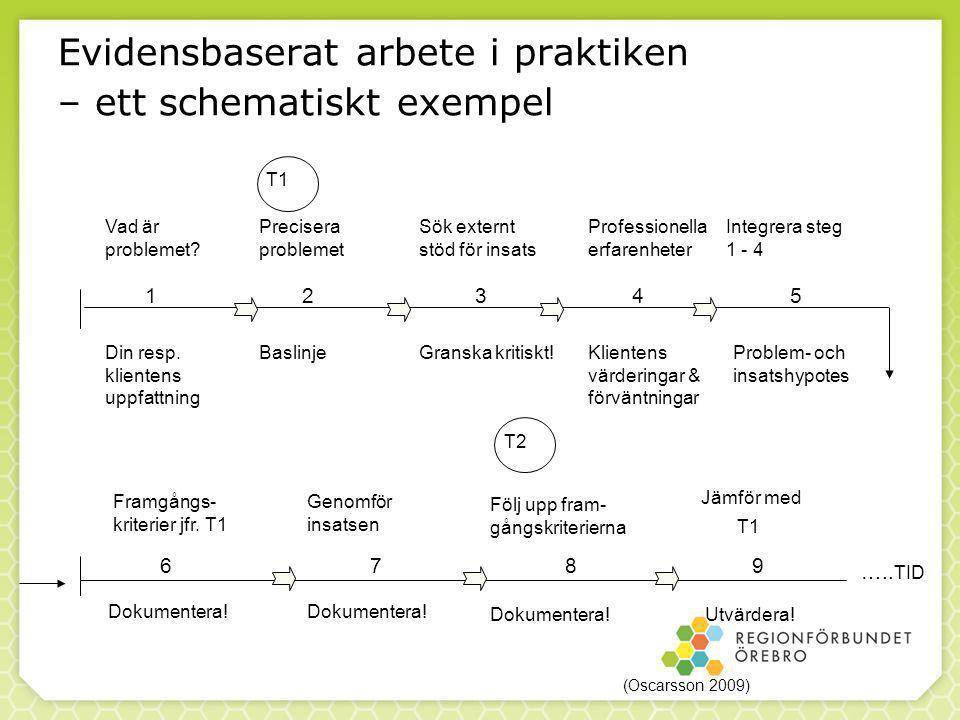 Evidensbaserat arbete i praktiken – ett schematiskt exempel